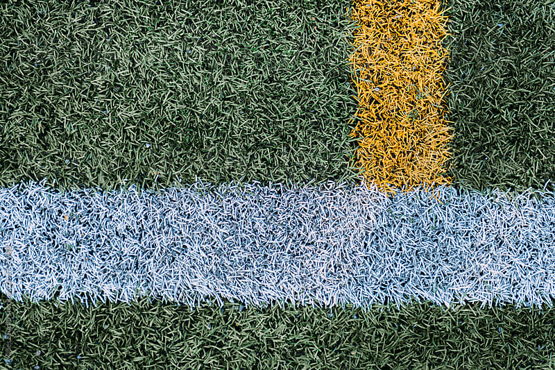 Artificial grass by Milles Studio for Stocksy United