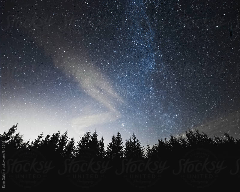 Starry Sky With Swirling Clouds Over Trees by Evan Dalen for Stocksy United