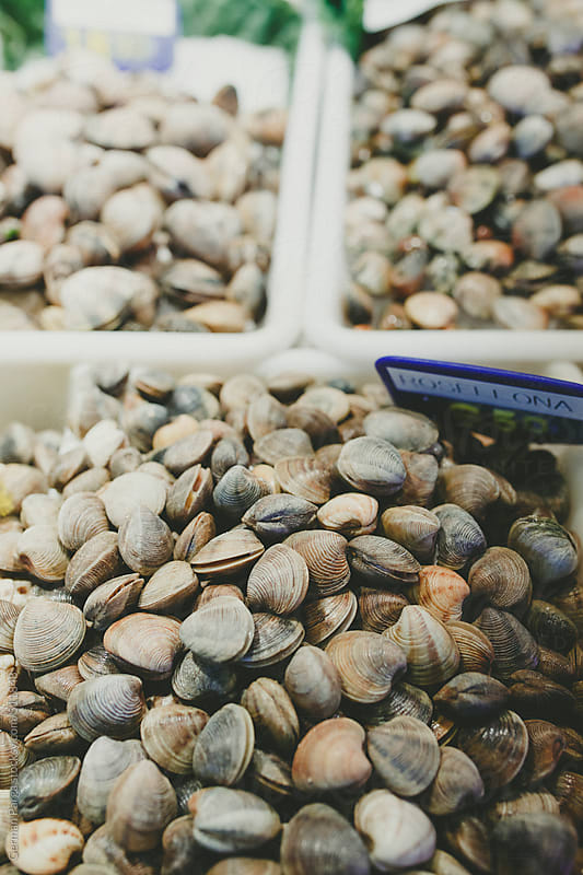 Small clams for sale at market by German Parga for Stocksy United