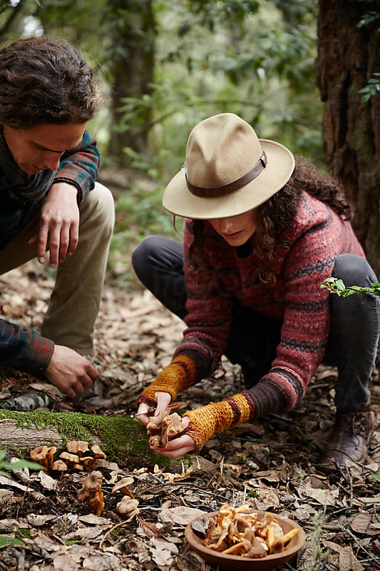 Couple mushroom foraging in the forest by Trinette Reed for Stocksy United
