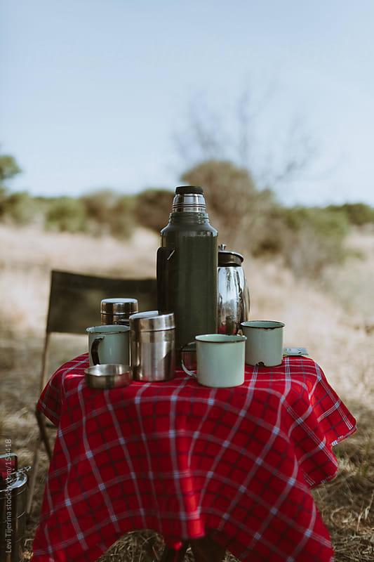 breakfast in the african bush by Levi Tijerina for Stocksy United