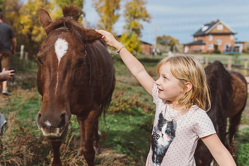 Farm girl petting a pony by Carey Shaw for Stocksy United