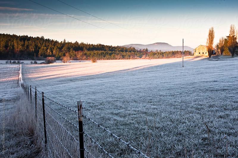 Sunrise over frost-covered pasture by Mihael Blikshteyn for Stocksy United