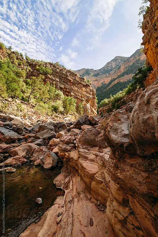 Canyon and river in Paradise Valley in High Atlas mountains, Morocco by Alejandro Moreno de Carlos for Stocksy United