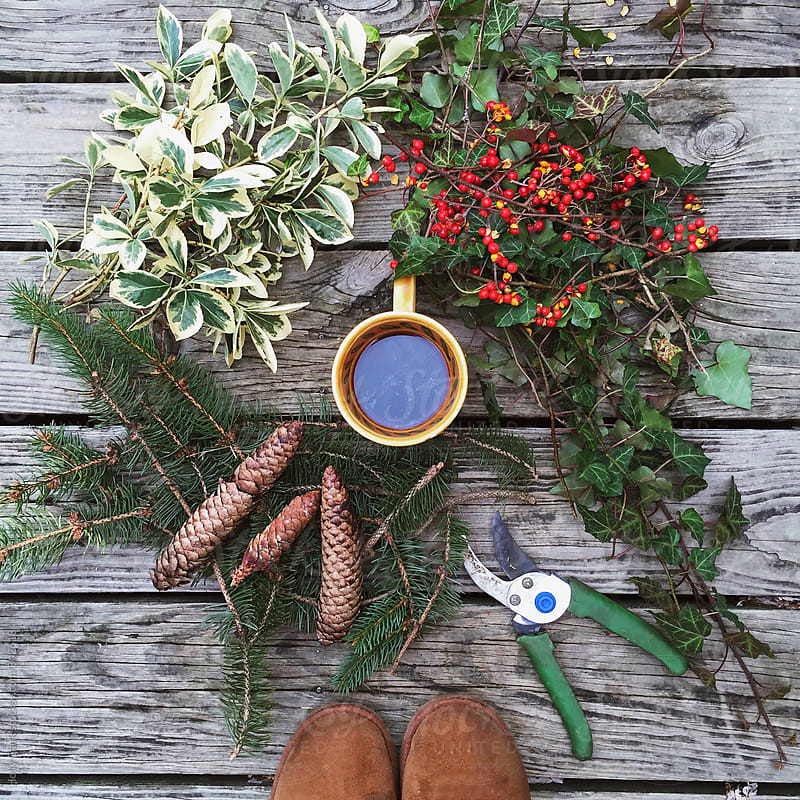 Morning coffee outdoors with natural items to make a wreath by Holly Clark for Stocksy United