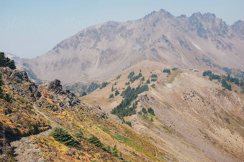 Hiking trail in Central Cascades by Paul Edmondson for Stocksy United