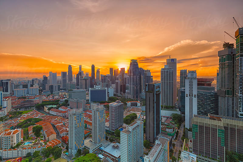 Singapore Morning Skyline by Jacobs Chong for Stocksy United