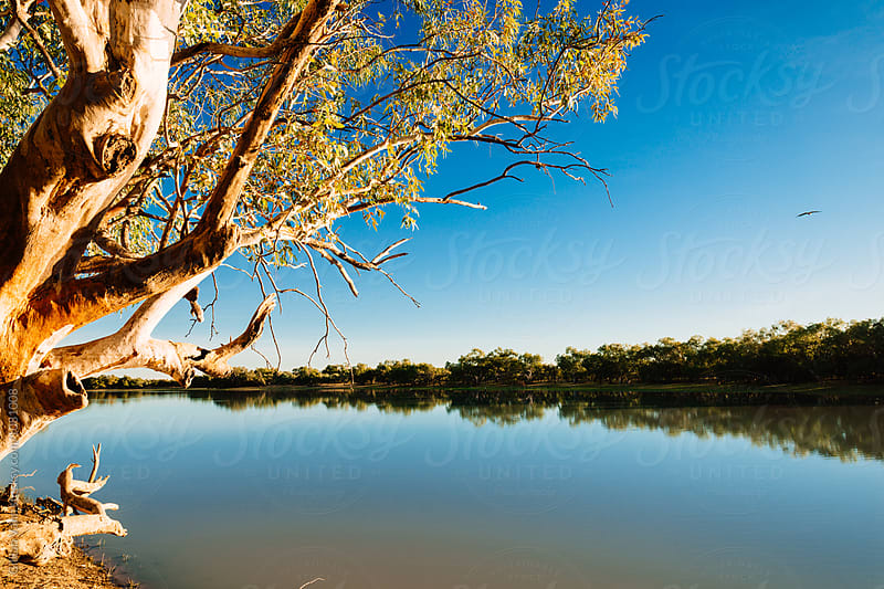 idyllic quiet spot by a river in country Australia by Gillian Vann for Stocksy United