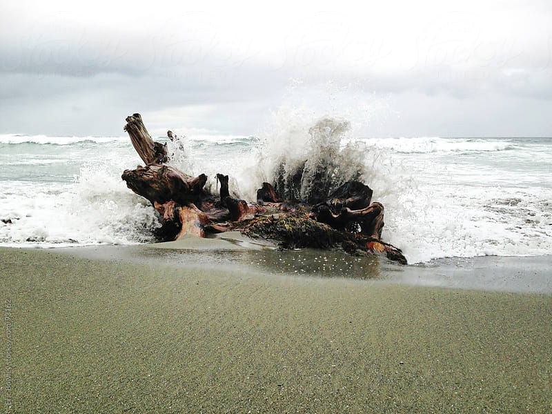 Wave Crashing Into Stump by Eric Bowley for Stocksy United