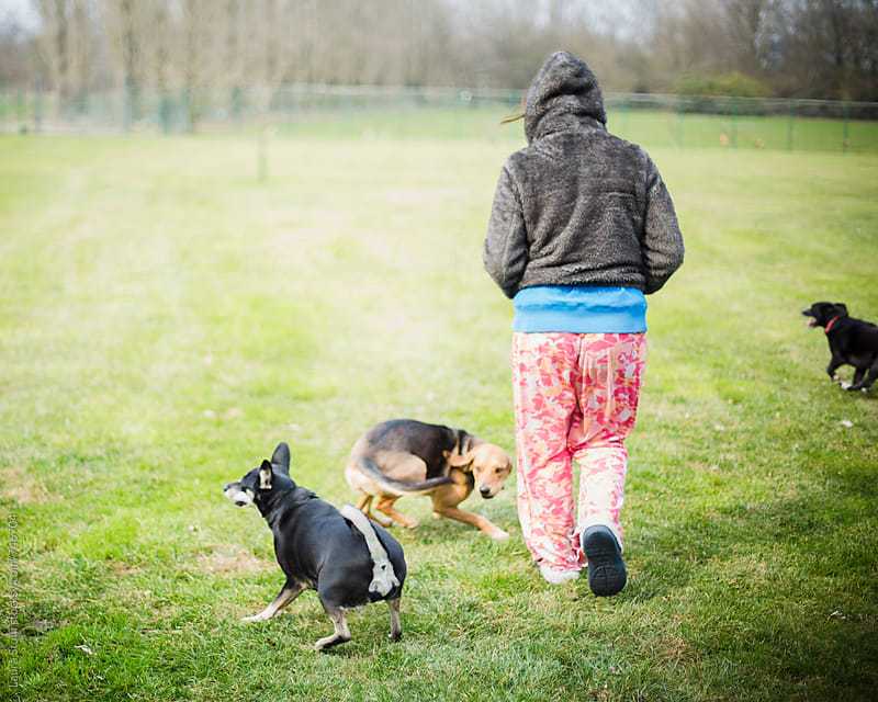 Rear sight of young woman and three dogs walking on turf in park by Laura Stolfi for Stocksy United