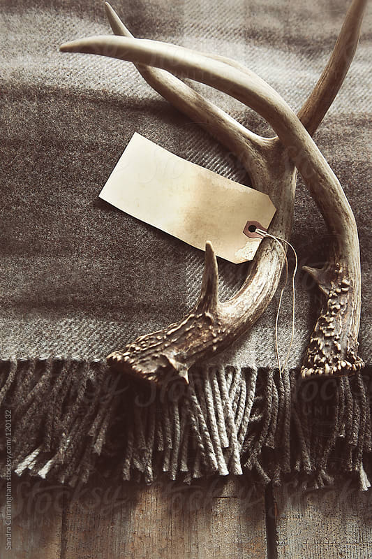Plaid wool blanket with antlers and tag by Sandra Cunningham for Stocksy United