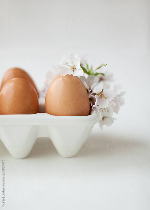 Eggs & Blossoms by Marta Locklear for Stocksy United