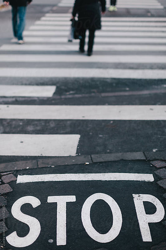 Zebra and stop sign by Zocky for Stocksy United