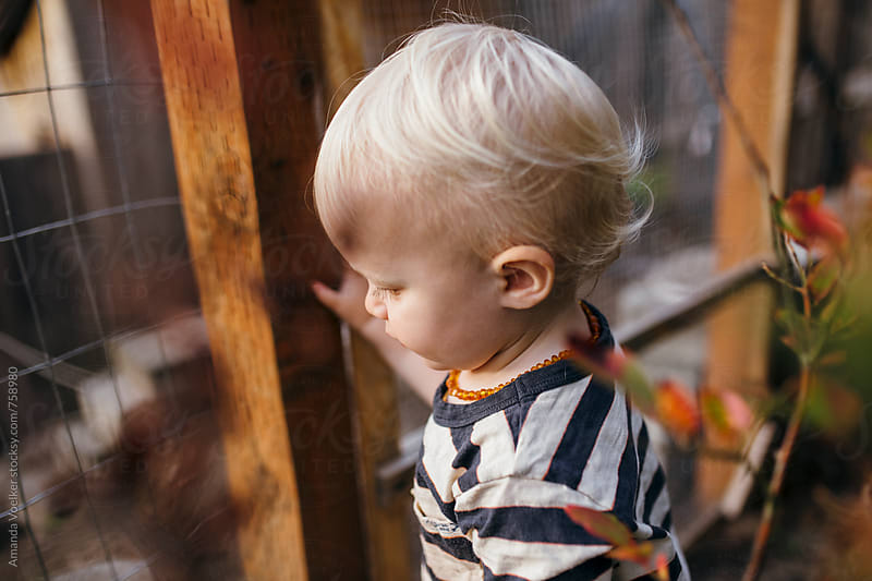 Profile through the plants of a Young Toddler Boy by Amanda Voelker for Stocksy United