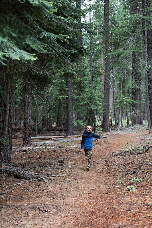 Running on the Pacifc Crest Trail by Carleton Photography for Stocksy United