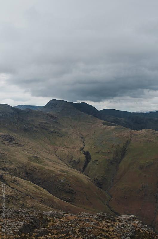 Grey Landscape by Neil Warburton for Stocksy United