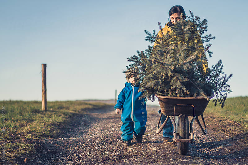 Mother and son moving a wheel barrow with a christmas tree in it by Leander Nardin for Stocksy United