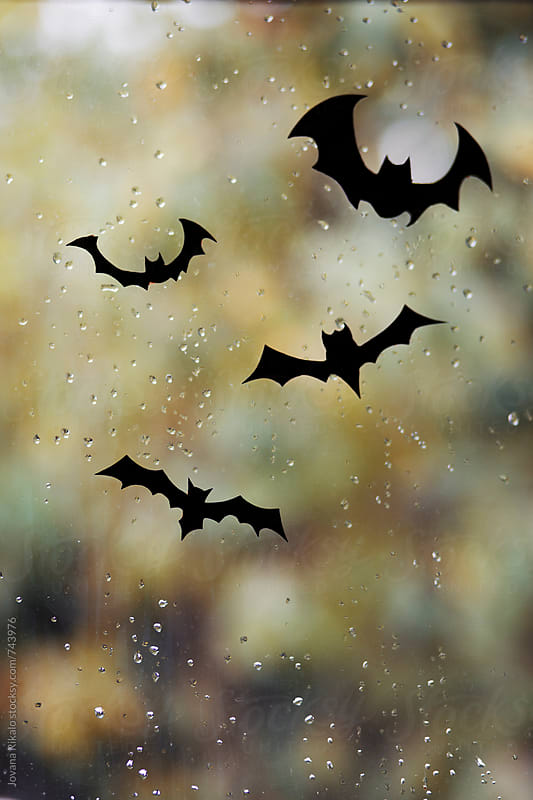 Halloween bats by Jovana Rikalo for Stocksy United