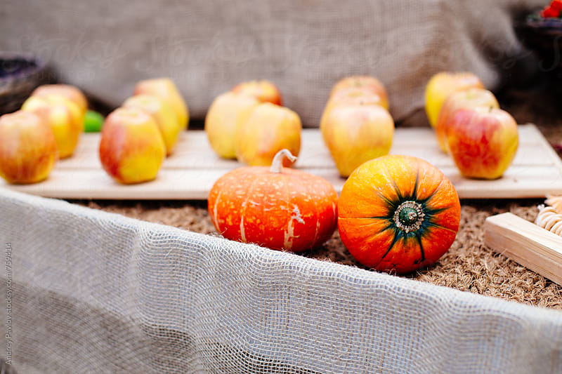 Autumn still life with small pumpkins and apples by Andrey Pavlov for Stocksy United