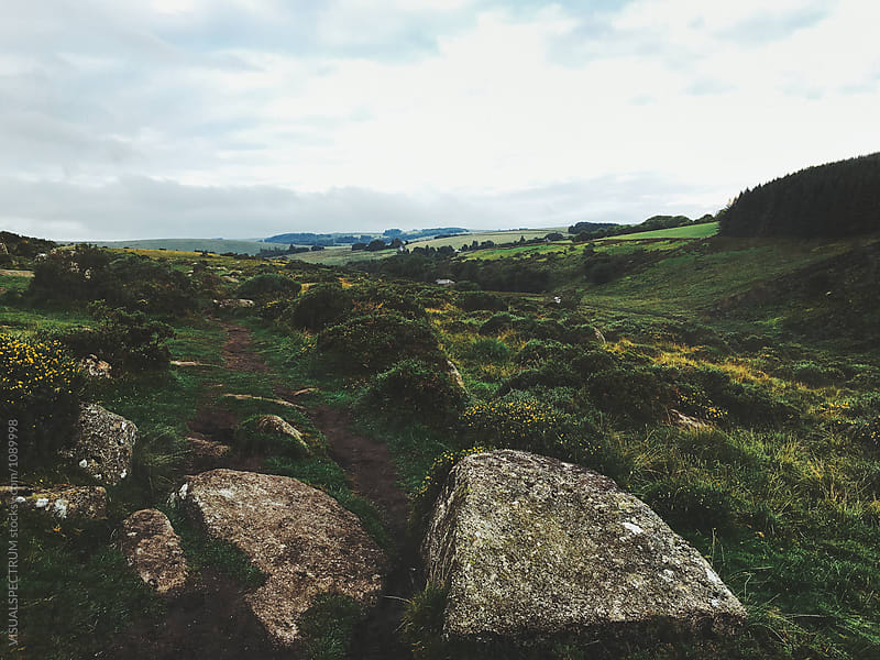 Green Dartmoor National Park Landscape (Devon, England) by VISUALSPECTRUM for Stocksy United