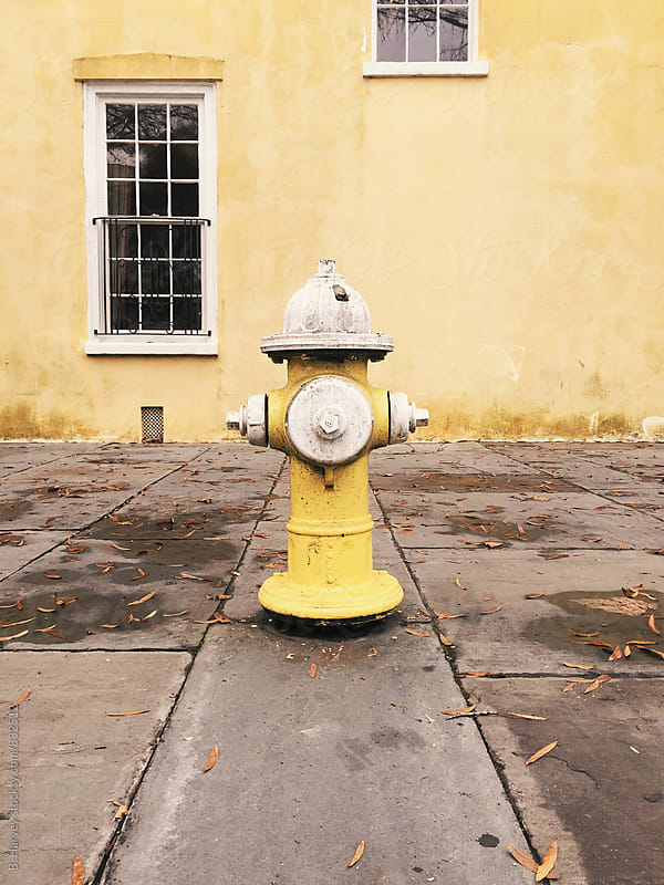 Yellow Fire Hydrant by B. Harvey for Stocksy United