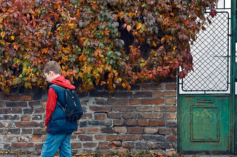 Boy is coming from school with a bag on the back in autumn by Marija Anicic for Stocksy United