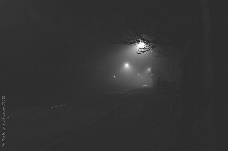 Foggy Road by Neil Warburton for Stocksy United