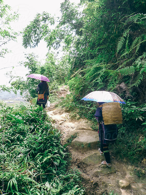 Two Hmong women hiking on rainforest trail with sun umbrellas, Sapa, Vietnam by Alejandro Moreno de Carlos for Stocksy United
