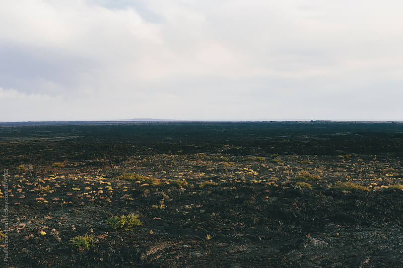 Sparse volcanic  landscape, horizon and sky in distance by Paul Edmondson for Stocksy United