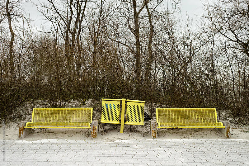 Yellow benches by Marcel for Stocksy United