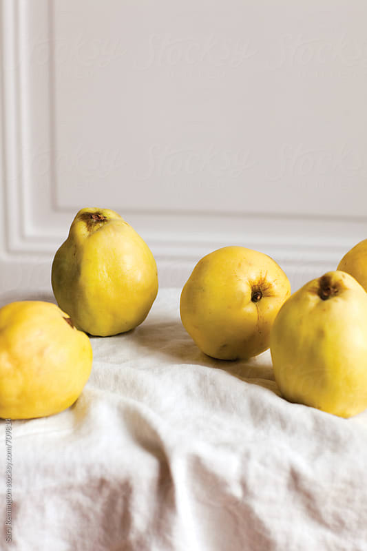 Organic Quince by Sara Remington for Stocksy United