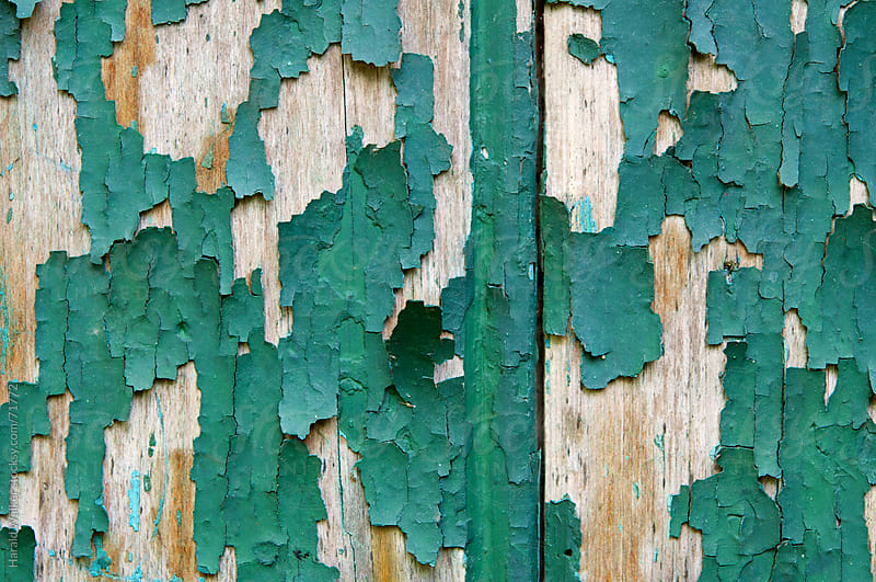 Flaking green paint by Harald Walker for Stocksy United