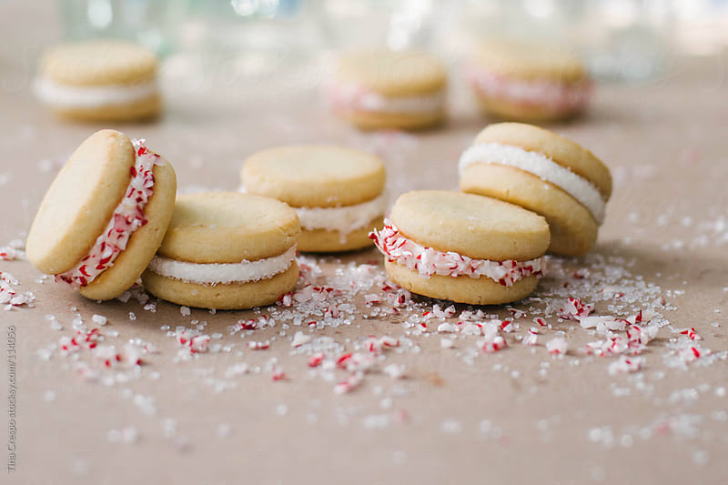 Holiday Cookies with Sprinkles by Tina Crespo for Stocksy United