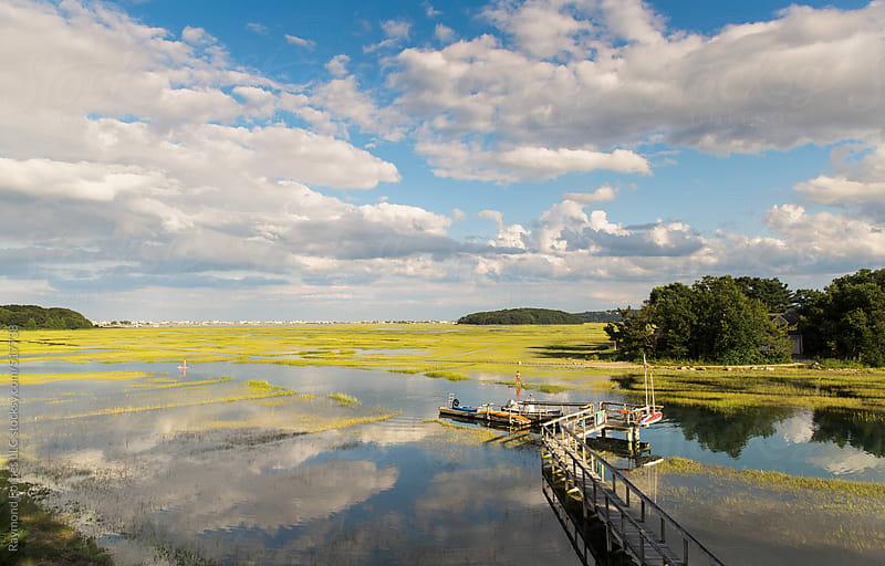 Marsh Landscape in Massachusetts by Raymond Forbes LLC for Stocksy United
