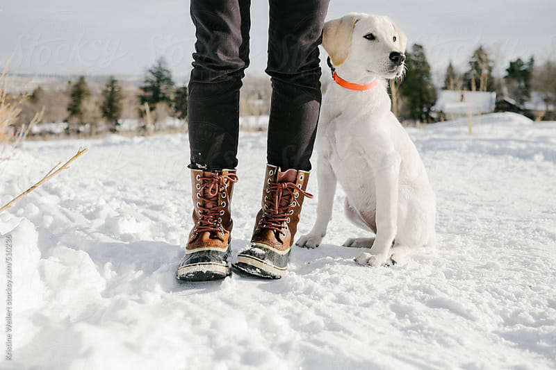 Puppy standing in the snow next to woman wearing boots by Kristine Weilert for Stocksy United