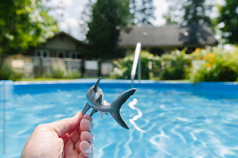 Toy Shark in Swimming Pool by Raymond Forbes LLC for Stocksy United