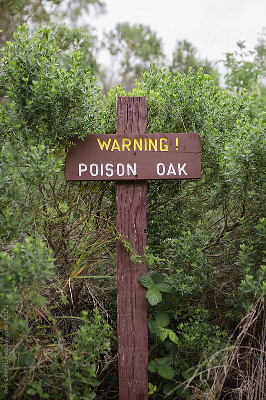 Poison Oak warning sign by Amy Covington for Stocksy United