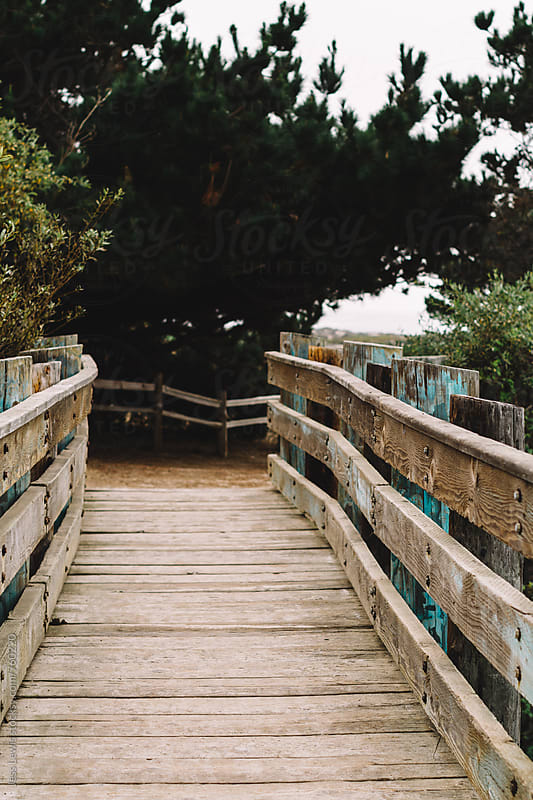 rustic wooden footbridge by Jess Lewis for Stocksy United