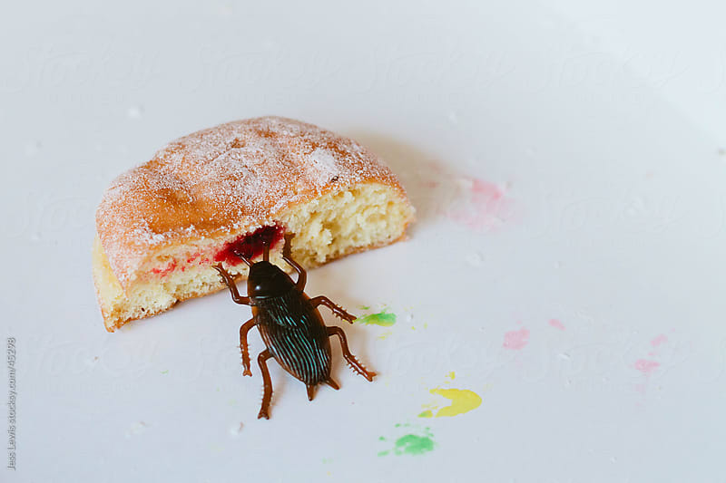 fake cockroach near a jelly doughnut by Jess Lewis for Stocksy United