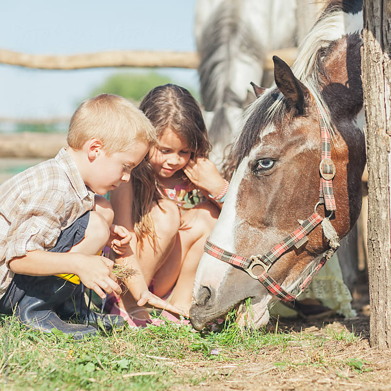 Boy and Girl Feeding a Horse by Lumina for Stocksy United
