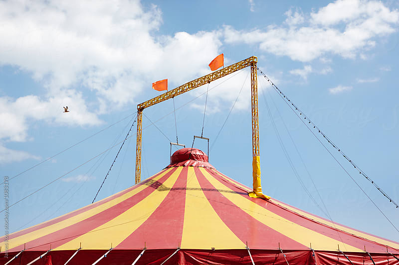 Circus Tent by James Ross for Stocksy United