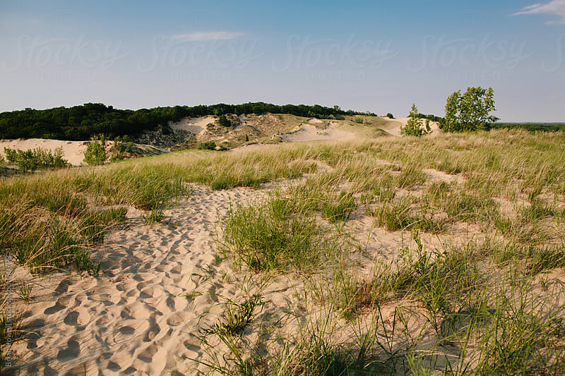 Warren Dunes State Park, lake Michigan by Brian Powell for Stocksy United