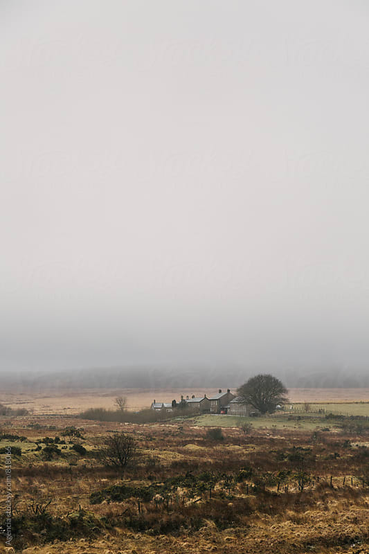 Dartmoor Fog by Agencia for Stocksy United