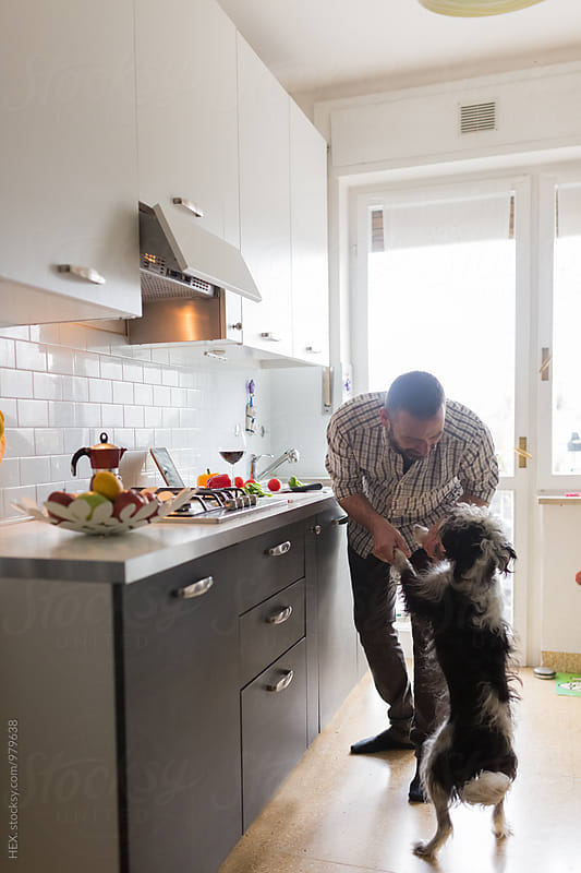 Man Playing in the Kitchen with a Dog While is Cooking  by HEX. for Stocksy United