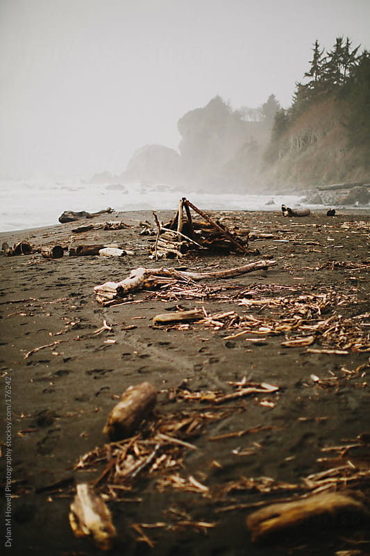 Driftwood shack by Dylan M Howell Photography for Stocksy United