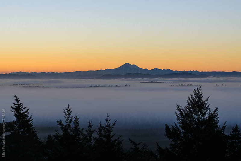 Mountain with low fog in the Pacific Northwest by Mick Follari for Stocksy United