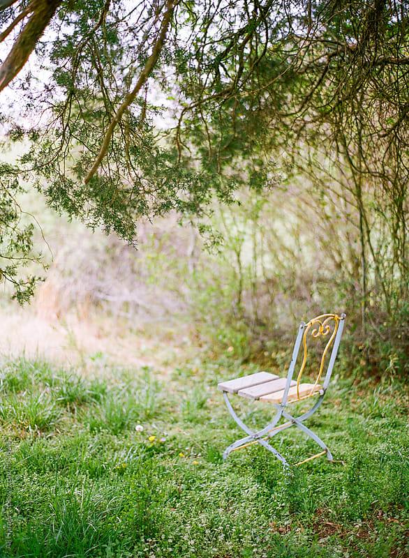 Blue chair in field of dandelions by Ali Harper for Stocksy United