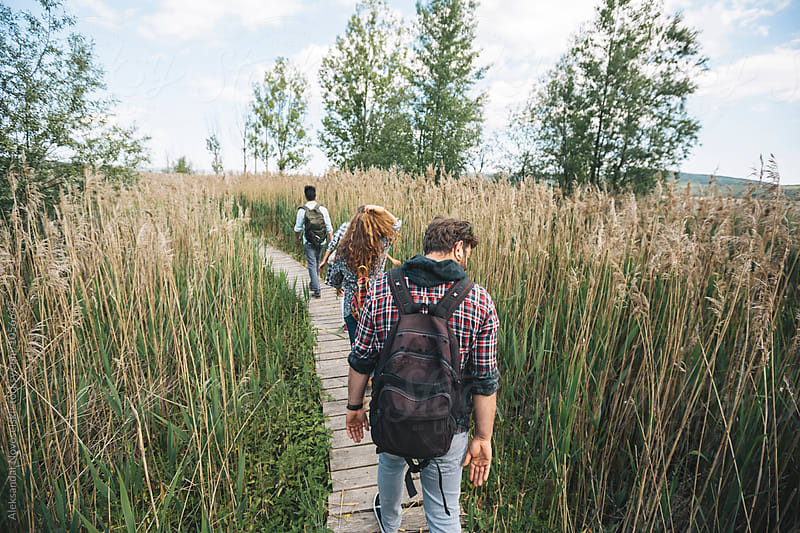 Group of friends walking on a wooden path across a swamp by Aleksandar Novoselski for Stocksy United