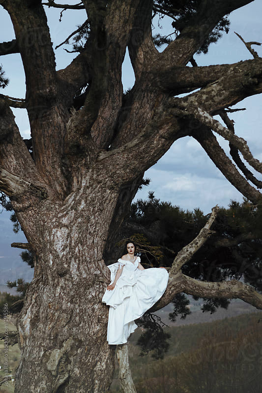 Woman sitting on a big pine tree by Jovana Rikalo for Stocksy United