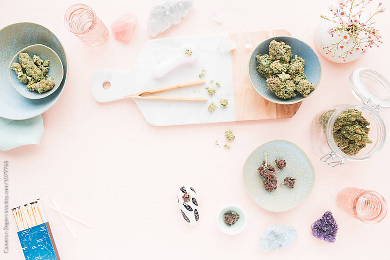 marijuana buds on pastel pink tabletop by Cameron Zegers for Stocksy United